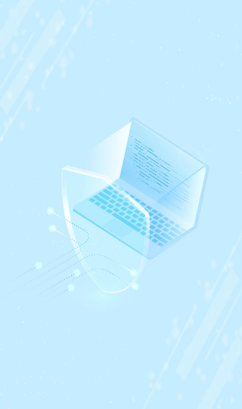 seguretat informàtica ips ids